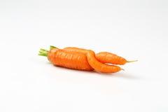 2 переплетенных моркови Стоковое Изображение