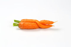 2 переплетенных моркови Стоковое Фото