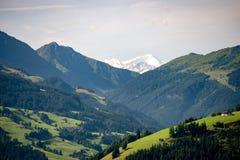 Перерастанный пик в баварских горных вершинах стоковые фотографии rf