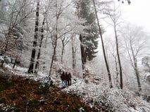 Пересекать границу вечного снега стоковое изображение rf