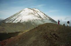 пересекая новое tongariro zealand Стоковые Фото