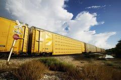 пересекая поезд Стоковое Изображение