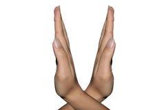 2 пересеченной руки Стоковые Изображения RF