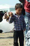 Переселенцы ребенка с игрушкой стоковая фотография