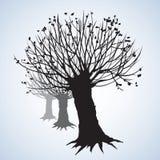 Переулок безлистных деревьев предпосылка рисуя флористический вектор травы Стоковое фото RF