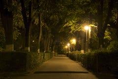 Переулок в ноче Стоковая Фотография