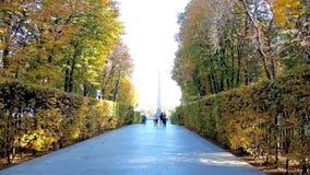 Переулок в парке осени вечной славы в Киеве, Украине сток-видео
