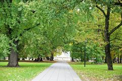 Переулок в парке осени Стоковые Изображения