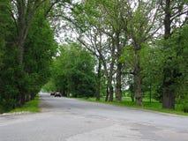 переулок длиной стоковое изображение rf
