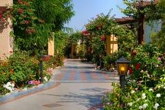 переулок красивейший стоковое фото