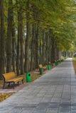переулок benches парк Стоковая Фотография