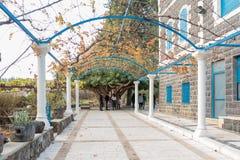 Переулок в греческом правоверном монастыре 12 апостолов в Capernau Стоковая Фотография