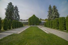 Переулок в парке с зелеными деревьями и кусты в саде Стоковая Фотография