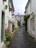 Переулок в St Martin de Re, Il de Re hollyhocks стоковые изображения