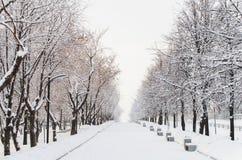 Переулок зимы Стоковая Фотография