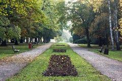 Переулок и тропа дерева с стендами в осени паркуют Стоковые Фотографии RF