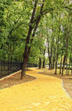 Переулок осени Стоковое Изображение RF