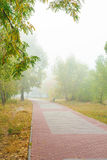 Переулок парка в тумане Стоковые Фотографии RF