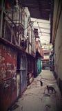 Переулок подробный отчёт Стоковые Фото