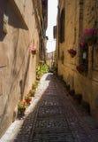 Переулок с вазами цветка стоковые фотографии rf