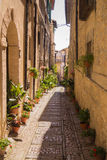 Переулок с вазами цветка стоковая фотография