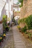 Переулок с вазами цветка стоковое фото