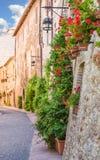Переулок с цветками стоковое фото rf