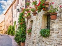 Переулок с цветками стоковые изображения rf