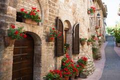 Переулок с цветками стоковое изображение