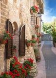 Переулок с цветками Стоковые Изображения