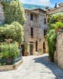 Переулок с цветками стоковые фото