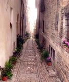 Переулок Стоковая Фотография