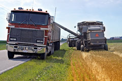 переход нагрузки зерна стоковая фотография