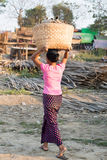 Переход бамбуковых журналов Стоковые Изображения