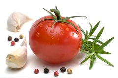 перец базилика розмаринового масла чеснока томата Стоковое Изображение RF