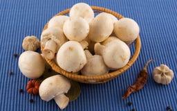 перец грибов трав корзины Стоковое Фото
