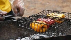 Перец зажарен на огне на пикнике сток-видео