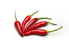 Перец красного chili Стоковая Фотография