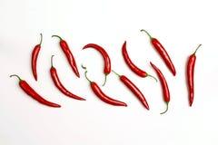 Перец красных чилей на белой предпосылке Стоковая Фотография