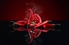 Перец красных чилей Стоковое Изображение