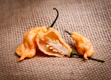Перец призрака персика ` s Джэй супер горячий Стоковые Изображения