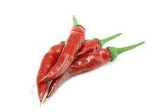 Перец стручков Chili горячий Стоковое Изображение RF