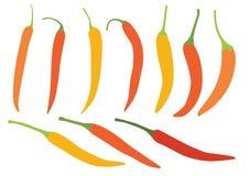 Перец чилей цвета желтый оранжевый на белой иллюстрации предпосылки бесплатная иллюстрация