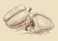 перец бесплатная иллюстрация