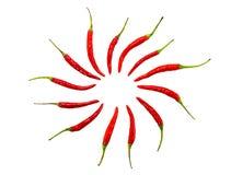 перец chili горячий Ингридиент горящей приправой традиционный азиатский круг предпосылки сложенный стручком на белизне Стоковые Фотографии RF