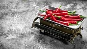 Перец Chili горячий на масштабах Стоковое Изображение RF