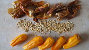 Перец Chili, свежий, сухой, семена стоковые фотографии rf