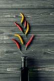 Перец Chili Стоковая Фотография RF