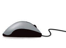 перечень мыши Стоковая Фотография RF