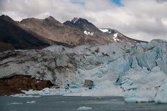 Перед ледником Стоковая Фотография RF